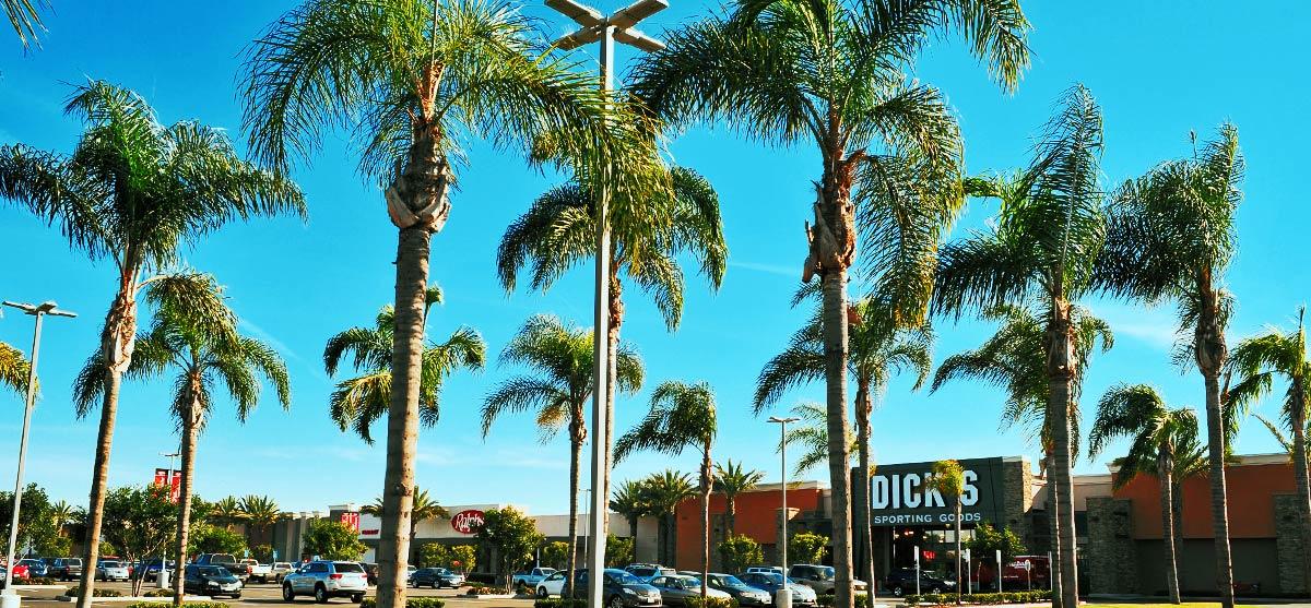 AceElectric-SportsArena_ShoppingCenter-5